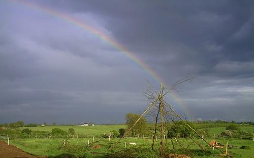 rainbow-16_5_2007_ne_view.jpg